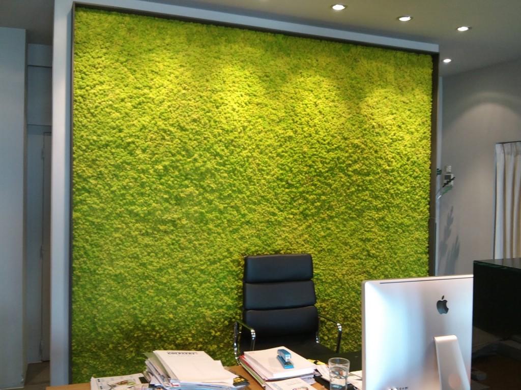 Мох на стене в офисе