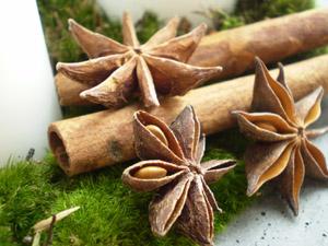Новогодние украшения с анисом - флористика и дизайн с Эми